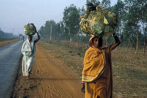 Women - foto di World Bank Photo Collection