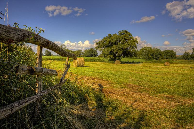 Rete Rurale Nazionale