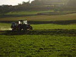 Agroalimentare Emilia-Romagna