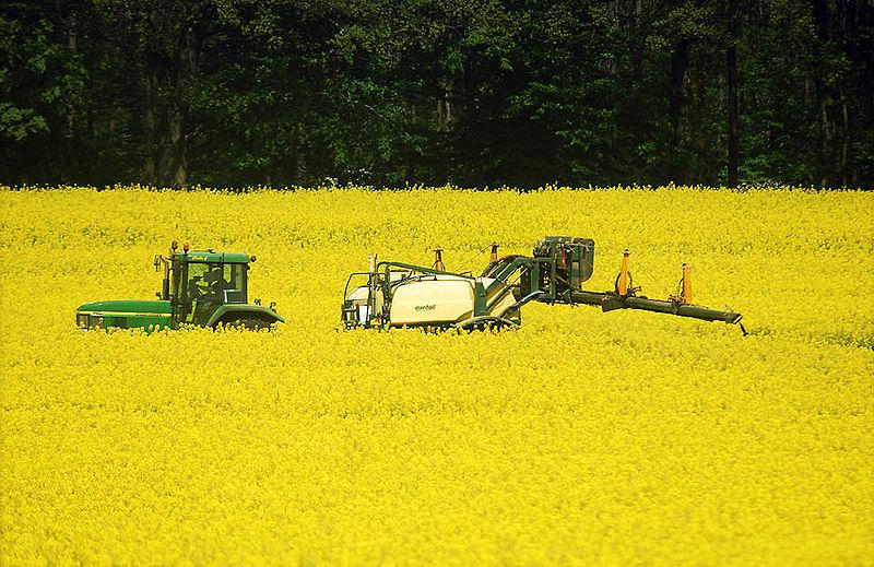 Biocarburanti - Autore: Henry von Platen