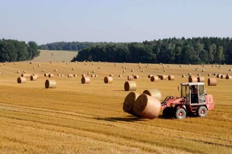 Strumenti finanziari agricoltura