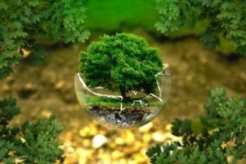 Cooperazione ambientale - Photo credit: Foter.com
