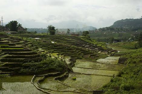 Bando di lavori in Nepal