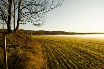 Politica Agricola Comune - Photo credit: Ernst Vikne