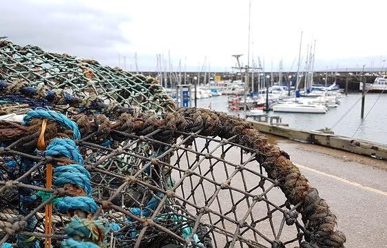 Fondo europeo pesca