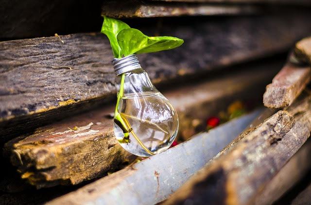 Green new deal - Foto di RoboAdvisor da Pixabay