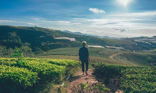 PSR Abruzzo: contributi per giovani agricoltori