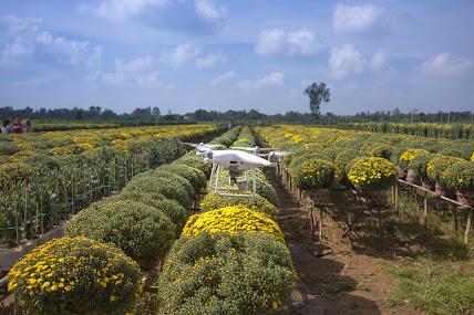 Coldiretti: agricoltura 4.0 vale 400 milioni di euro