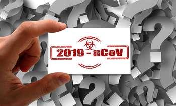 Conseguenze del coronavirus sull'export: Photocredit: Gerd Altmann da Pixabay