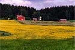 Paesaggio rurale - Foto di Petritap