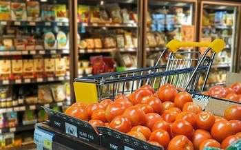 Filiera agroalimentare - Photo credit: Foto di Alexas_Fotos da Pixabay