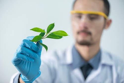 Bioindustrie