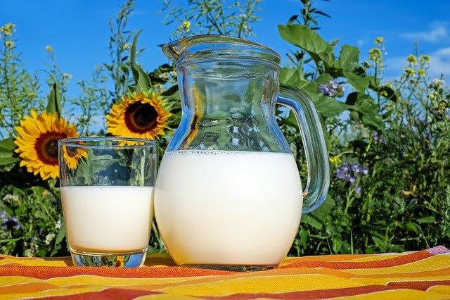 Latte nelle scuole - Photo credit: Foto di Couleur da Pixabay