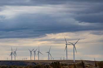 Green economy - Foto di Brett Sayles da Pexels